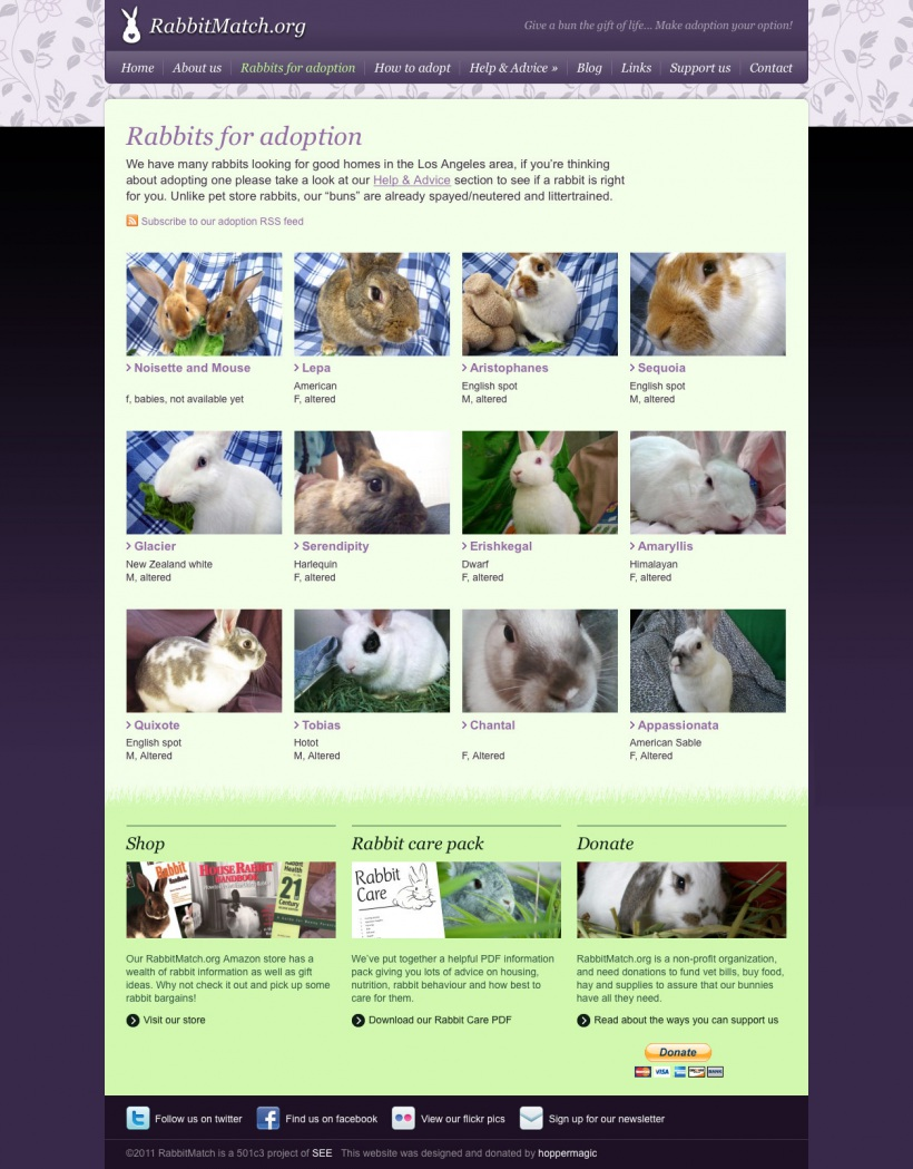 Rabbit Match website